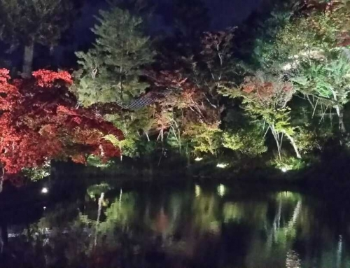 JAPAN – THE ULTIMATE DESTINATION FOR FOODIES AND AUTUMN LOVERS WITH A FANCY TOUCH