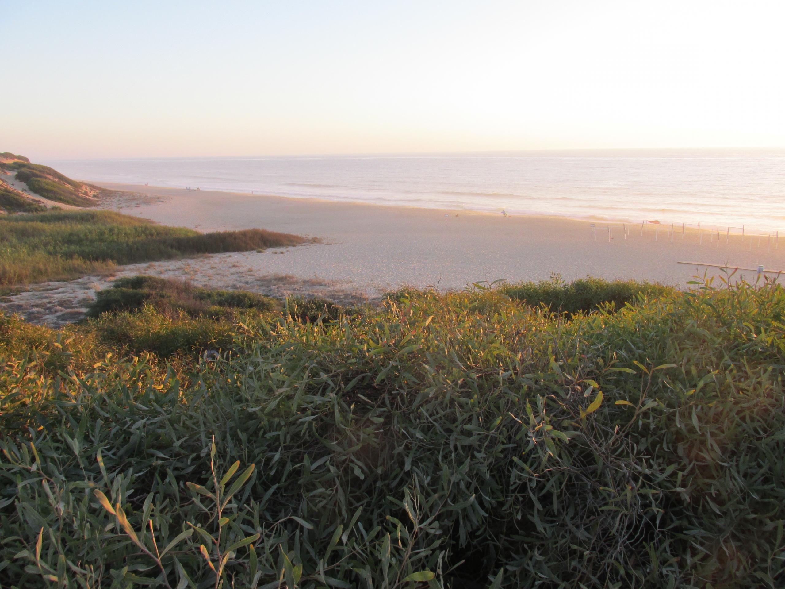 Praia Vigia